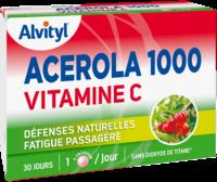 Govital Acerola 1000 à Cavignac