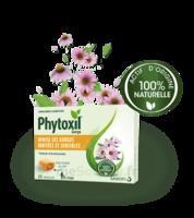 Phytoxil Pastilles Gorge Pastilles Adulte Enfant +12 Ans B/20 à Cavignac