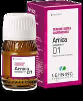 Lehning Arnica Complexe N° 1 Solution Buvable En Gouttes Fl/30ml à Cavignac