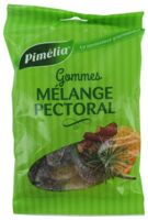 Pimelia Gommes Mélange Pectoral Sachet/100g à Cavignac