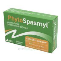 Phytospasmyl Caps B/60 à Cavignac