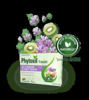 Phytoxil Transit Comprimés B/20 à Cavignac