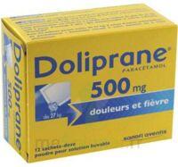 DOLIPRANE 500 mg Poudre pour solution buvable en sachet-dose B/12 à Cavignac