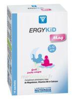 Ergykid Mag Poudre solution buvable 14 Sachets à Cavignac