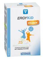 Ergykid Vitamin' Poudre solution buvable 14 Sachets à Cavignac