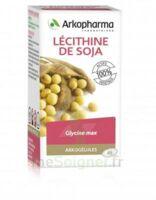 Arkogélules Lécithine de soja Caps Fl/150 à Cavignac