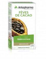 Arkogélules Cacao Gélules Fl/45 à Cavignac