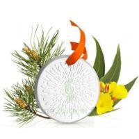 Puressentiel Diffusion Diffuseur Céramique galet médaillon pour Huiles Essentielles à Cavignac