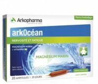Arkocean Magnesium Marin Solution Buvable Caramel 20 Ampoules/10ml à Cavignac