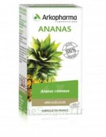 Arkogélules Ananas Gélules Fl/45 à Cavignac