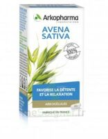 Arkogélules Avena Sativa Gélules Fl/45 à Cavignac