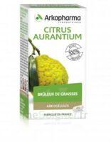 Arkogélules Citrus aurantium Gélules Fl/45 à Cavignac