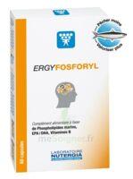 Ergyfosforyl Caps B/60 à Cavignac