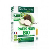 Santarome Bio Radis noir Solution buvable 20 Ampoules/10ml à Cavignac