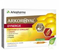 Arkoroyal Dynergie Ginseng Gelée Royale Propolis Solution Buvable 20 Ampoules/10ml à Cavignac