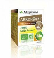 Arkoroyal 100% Gelée Royale Bio Gelée Pot/40g à Cavignac