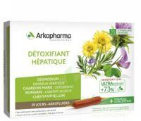 Arkofluide Bio Ultraextract Solution buvable détoxifiant hépatique 20 Ampoules/10ml à Cavignac