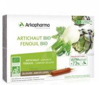 Arkofluide Bio Ultraextract Artichaut Fenouil Solution buvable 20 Ampoules/10ml à Cavignac