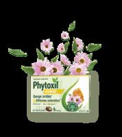 Phytoxil Gorge & Défenses Naturelles Pastilles B/20 à Cavignac