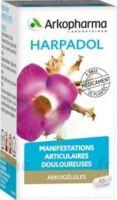 ARKOGELULES HARPAGOPHYTON Gélules Fl/150 à Cavignac