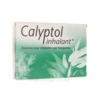 Calyptol Inhalant, émulsion Pour Inhalation Par Fumigation à Cavignac