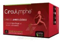 Santé Verte Circulymphe Triple Actions B/30 à Cavignac