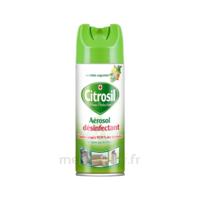 CITROSIL Spray désinfectant maison agrumes Fl/300ml à Cavignac