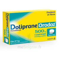 DOLIPRANEORODOZ 500 mg, comprimé orodispersible à Cavignac