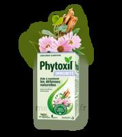 Phytoxil Immunité Gélules B/40 à Cavignac