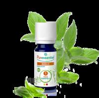 Puressentiel Huiles essentielles - HEBBD Basilic BIO* - 5 ml à Cavignac
