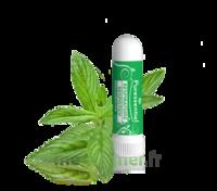 Puressentiel Respiratoire Inhaleur Respiratoire aux 19 Huiles Essentielles - 1 ml à Cavignac