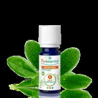 Puressentiel Huiles essentielles - HEBBD Ravintsara BIO* - 5 ml à Cavignac