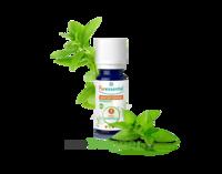 Puressentiel Huiles essentielles - HEBBD Menthe poivrée BIO* - 30 ml à Cavignac