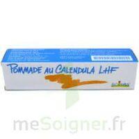 CALENDULA LHF POM T/20G à Cavignac