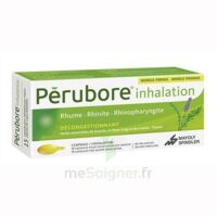 Perubore Caps Inhalation Par Vapeur Inhalation Plq/15 à Cavignac