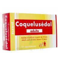 COQUELUSEDAL ADULTES, suppositoire à Cavignac