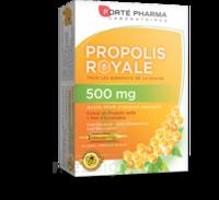 Forte Pharma Propolis 500 Solution Buvable 20 Ampoules/10ml à Cavignac