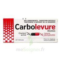 CARBOLEVURE Gélules adulte Plq/30 à Cavignac