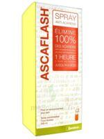 Ascaflash Spray anti-acariens 500ml à Cavignac