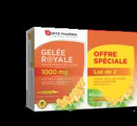 Forte Pharma Gelée Royale 1000 Mg Solution Buvable 2*b/20 Ampoules/10ml à Cavignac