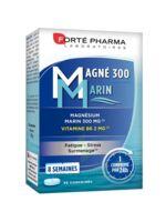 Magné 300 Marin (2 mois) à Cavignac