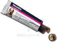 Biocanina Medi-Croc Barre chien B/6 à Cavignac