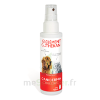 Clément Thékan Caniderma Solution Externe Cicatrisant Spray/125ml à Cavignac
