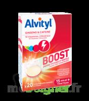 Alvityl Boost Comprimés B/20 à Cavignac