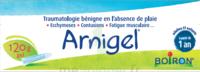 Boiron Arnigel Gel T/120g à Cavignac