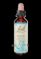 Fleurs de Bach® Original Beech - 20 ml à Cavignac
