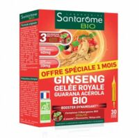 Santarome Bio Ginseng Gelée Royale Guarana Acérola Solution Buvable 30 Ampoules/10ml à Cavignac