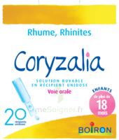 Boiron Coryzalia Solution Buvable Unidose B/20 à Cavignac