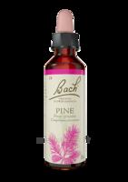 Fleurs De Bach® Original Pine - 20 Ml à Cavignac
