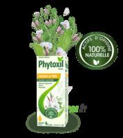 Phytoxil Toux Sans Sucre Sirop Adulte Enfant +2 Ans Fl/120ml à Cavignac